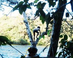 Aldeia Quatro Cachoeiras (fergprado) Tags: travel boy brazil nature water rio gua brasil river kid child culture criana floresta florest menino cultura tribo indigenous aldeia ndio cahoeira idigena