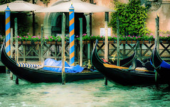 Venice (Zeger Vanhee) Tags: water gondolas vaporetto medievalarchitecture veniceviews
