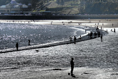 The Beach at South Bay, Scarborough. (ManOfYorkshire) Tags: shadow sea people dog beach reflections sand tide sunny edge scarborough seafront paddling spa lowry northyorkshire