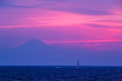 Evening Fuji view from Arasaki (shinichiro*) Tags: japan spring fuji may kanagawa crazyshin   miura 2016    arasaki asiandust  sd1m sigmasd1merrill sigma18300mmf3563dcmacrooshsm 20160501sdim2149