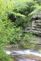 IMG_0376 (rob02190) Tags: franklloydwright pa fallingwater
