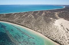 Coral Bay_western Australia_3124
