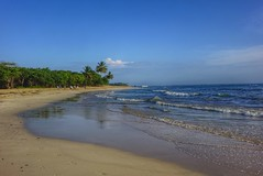 Playa Dorada Beach Dom Rep. (canaimaman) Tags: ocean morning blue sea hot tree beach island sand palm tropical humid