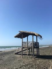 Adiós desde la playa.