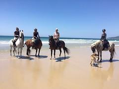 Jessica_Emmerich_Horsemanship_Andalusien_16 (jessica_emmerich) Tags: hotel natural jessica hurricane second andalusien spanien tarifa kurs horsemanship emmerich hippica