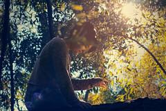 IMG_7952 (dafloct) Tags: fantasy wood bosque fantasia cs6 ps canon 50mm concepcion chile bio parque ecuador park outdoor aire libre tarde afternoon salida out hobbie photo women woman mujer joven young cute beauty bella guapa arboles tronco madera hojas luz day light