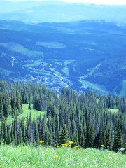 Sun Peaks in summer (Ruth and Dave) Tags: trees summer forest village view meadow alpine skiresort valley vista sunpeaks sunpeaksresort todmountain