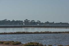 DSC_6041 (Pasquesius) Tags: sea island mare lagoon barche sicily laguna sailboats saline sicilia saltponds isola marsala mozia mothia stagnone motya riservanaturaledellostagnone