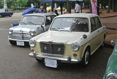 BCCM16029 (tanayan) Tags: park classic car nikon automobile meeting mini mg nagoya british j1 1100    tsuruma