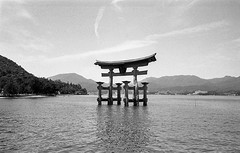 Miyajima, Japan. 2016 (Mambo Ferido) Tags: blackandwhite film water japan landscape shrine kodak trix places itsukushimashrine wonders toriigate traveldocumentary placesandfaces pushthatfilm