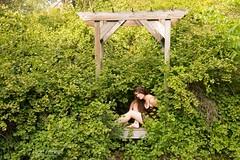 Alexa (austinspace) Tags: portrait woman flower tree grass washington backyard spokane dress mesh wildlife longhair sanctuary acreage