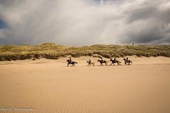 beach ride (Aga G. Photography) Tags: ireland sky horses beach clouds sand dunes angry bundoran gallop