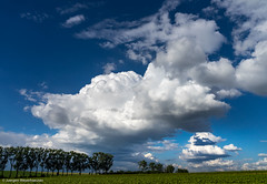 DSC02495.jpg (J.Weyerhuser) Tags: felder wolken hechtsheim