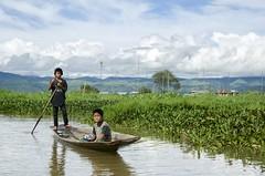Burma, Inle lake. (fdecastrob) Tags: fishing fisherman burma inlelake birmania irle d7000