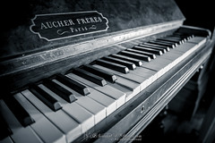 Piano (Qicong Lin(Kenta)) Tags: blackandwhite white black performance piano australia melbourne indoor instrument openhousemelbourne