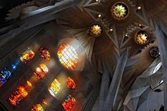 Barcelona - La Sagrada de Familia (Pat Kelleher) Tags: barcelona light colour architecture canon spain cathedral 85mm stainedglass gaudi lasagradadefamilia patkelleherphotography