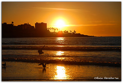 Light goes down (Olivia Heredia) Tags: california winter sunset usa naturaleza beach nature atardecer us unitedstates torreypines sandiego playa socal invierno hdr highdynamicrange nofilter tonemapped tonemapping 1exp sinfiltro oliviaheredia oliviaherediaotero