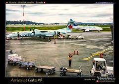 Victoria Internation Airport-100 (Revybawb2010) Tags: canada bc aircraft victoria airports boeing737