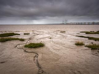 Muddy Banks