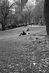 XE1-04-09-13-338 (a.cadore) Tags: nyc newyorkcity blackandwhite bw zeiss centralpark candid fujifilm carlzeiss xe1 zeissbiogon35mmf2 biogont235 fujifilmxe1