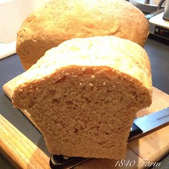 "These loaves looked so good that I just couldn't wait to have a slice!  Are you doing any Thanksgiving baking tonight?  #food #Thanksgiving • <a style=""font-size:0.8em;"" href=""http://www.flickr.com/photos/54958436@N05/15701603947/"" target=""_blank"">View on Flickr</a>"