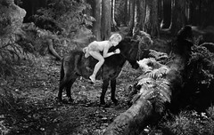 JS4362 (angelinodaisuke) Tags: boy portrait people horse male animals forest woodland movie mammal one fulllength performingarts mickeyrooney riding pony american teenager prominentpersons actor celebrities performer leaning oneperson horseriding moviedirector northamerican movieactor animalriding equestrians caucasianethnicity maxreinhardt amidsummernightsdream1935movie 11772582 js4362