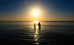 bathing in the sea at sunset - Tel-Aviv beach - November  8  2014 (Lior. L) Tags: november light sunset sea sun reflection beach water silhouette canon reflections golden israel telaviv mediterranean shadows horizon silhouettes sigma wideangle flare beaches bathing canondslr goldenhour mediterraneansea shimmering shimmer ultrawideangle sigma1020 goldenhours telavivbeach horizonbeach canon600d canont3i canonkiss5 novem