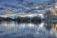 Under a winters sky (ArtGordon1) Tags: uk winter england london sunrise eppingforest earlymorning walthamforest hollowponds davegordon davidgordon hollowpond artgordon1 daveartgordon daveagordon davidagordon