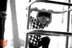 Kelly6wm (RachelBrandtPhotography) Tags: family boy blackandwhite bw playing playground climb familyportraits play sandiego son ladder junglegym climibing familyof4 sandiegochildphotographer sandiegochildphotography familyoffour sandiegofamilyphotography sandiegofamilyphotographer rachelbrandt rachelbrandtphotography