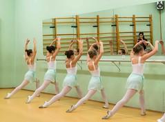20141217-_D8H6524 (ilvic) Tags: dance danza danse tanz dans taniec
