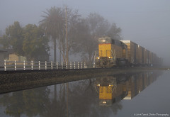 Misty Morn (Patrick Dirden) Tags: california railroad mist reflection water up northerncalifornia fog train puddle gm diesel engine rail unionpacific locomotive frenchcamp freight centralcalifornia manteca sanjoaquinvalley tulefog freighttrain generalmotors emd gp382 sanjoaquincounty unionpacificrailroad electromotivedivision mantecaca frenchcampca tidewatersouthern up717 tidewatersouthernrailroad