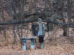 Transistors and Trees (lefeber) Tags: wood trees newyork rural vines woods rust rocks branches wires worn twigs ruraldecay hudsonvalley electricalbox rustymetal