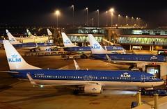 KLM Royal Dutch Airlines Boeing 737-8K2 PH-BXF (Mark 1991) Tags: amsterdam boeing klm schiphol ams 737 schipholairport 737800 royaldutchairlines amsterdamairport amsterdamschiphol amsterdamschipholairport phbxf