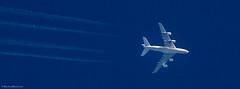British Airways Airbus A380-800 (BiteYourBum.Com Photography) Tags: uk greatbritain england apple nationalpark worthing westsussex unitedkingdom bowl ring airbus gb british airways britishairways canonef1740mmf4lusm southdowns allrightsreserved steyning bramber ipad cissbury steyningbowl cissburyring findon focusstacking macpro canonefs60mmf28macrousm a380800 airbusa380800 biteyourbum canoneos7d appleipad lrenfuse dawnandjim canonspeedlite430exii southdownsnationalpark sigma50500mmf4563dgoshsm loweproprorunner350aw lightroom5 biteyourbumcom camranger copyright2014biteyourbumcom