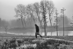 Taken (nokkie1) Tags: trees white lake man black holland me wet water netherlands grass lines fog contrast mine running eindhoven suitcase
