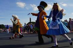 USA: Orlando: Walt Disney World - Magic Kingdom: 29-12-2014 (Maria-Julia Costa Severiano) Tags: voyage usa orlando do florida sony disney eua viagem northamerica alpha magickingdom norte a77 2014 america florida americadonorte