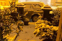 night time snow showers (RCB4J) Tags: winter snow art car yellow night garden photography scotland streetlight streetview ayrshire sodiumlight baytree frontdoorview newmilns irvinevalley vauxhallastraestate sonydt18250mmf3563 sonyslta77v ronniebarron rcb4j