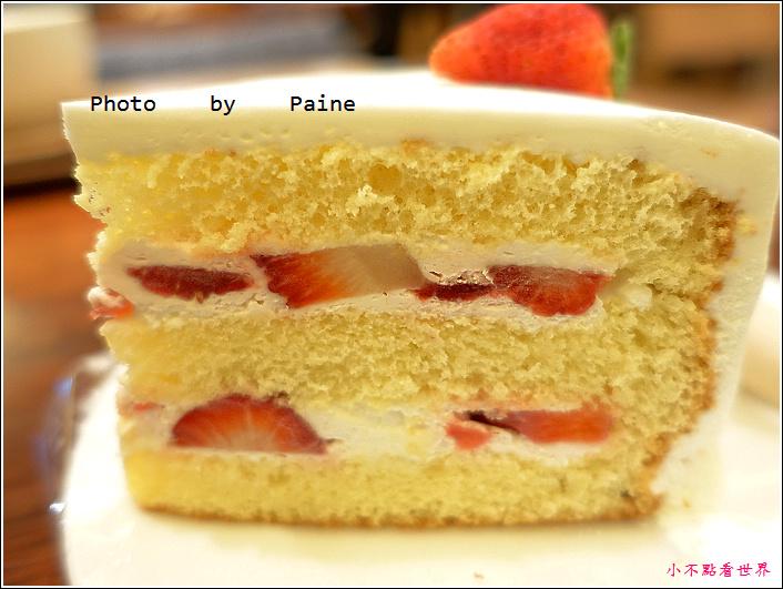 弘大peony cake (17).JPG