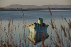 Douceur hivernale  Canet-en-Roussillon (Pyrnes orientales) (Vronique Delaux On/Off) Tags: winter france hiver roussillon sud tang douceur canetenroussillon