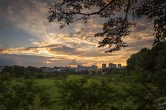 Beautiful Sunset in the City, Singapore (gintks) Tags: gardens singapore stunning epic gardencity singaporetourismboard gintaygintks