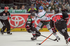 """DEL15 Kšlner Haie vs. Augsburg Panthers • <a style=""""font-size:0.8em;"""" href=""""http://www.flickr.com/photos/64442770@N03/16276374886/"""" target=""""_blank"""">View on Flickr</a>"""