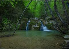 Gorga del Frare (antoniocamero21) Tags: color rio del agua rboles foto sony paisaje girona bosque catalunya ripolls bauma gorga vallfogona frare