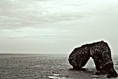 le pont de la mer (patoche 38) Tags: sea blackandwhite mer blancoynegro nature landscape mar noiretblanc
