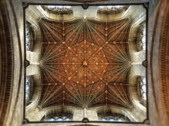 'iWindow to the Gods'           (see description) (Peter Miles) Tags: cathedral ceiling plus peterborough chancel iphone peterboroughcathedral 6s iphone6splus peterboroughchancelceiling