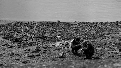 treasurepirates (1 of 1) (Baton_) Tags: people man london water thames sand stones shore battersea