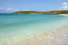 Pata Prieta (sarowen) Tags: ocean blue vacation beach water coast sand puertorico secretbeach shore caribbean vieques caribbeansea isladevieques viequespr viequespuertorico viequesisland islanena pataprieta