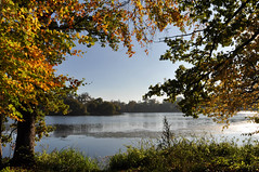 Capability Brown's lake at Coombe Abbey, Coventry. England. (Photography by Seb) Tags: autumnsun autumn landscape lake coombeabbey