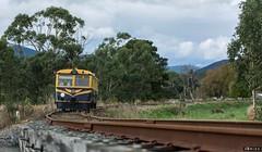 Trailing (Dobpics O'Brien) Tags: river diesel victorian rail railway healesville victoria railcar walker valley yarra watts yvr railways vr 22rm