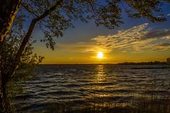 Golden Sunset At The Muritz (dietmar-schwanitz) Tags: blue light sunset sun lake color colour water germany deutschland gold see licht wasser sonnenuntergang blau sonne farbe goldenhour lightroom mecklenburgvorpommern mritz dietmarschwanitz nikond750 nikonafsnikkor24120mmf40ged