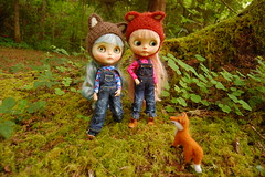 DSC_0006 (2) (Lindy Dolldreams) Tags: forest fox blythedoll sandraefigenio boriginalshats mayragalland flomopstudio